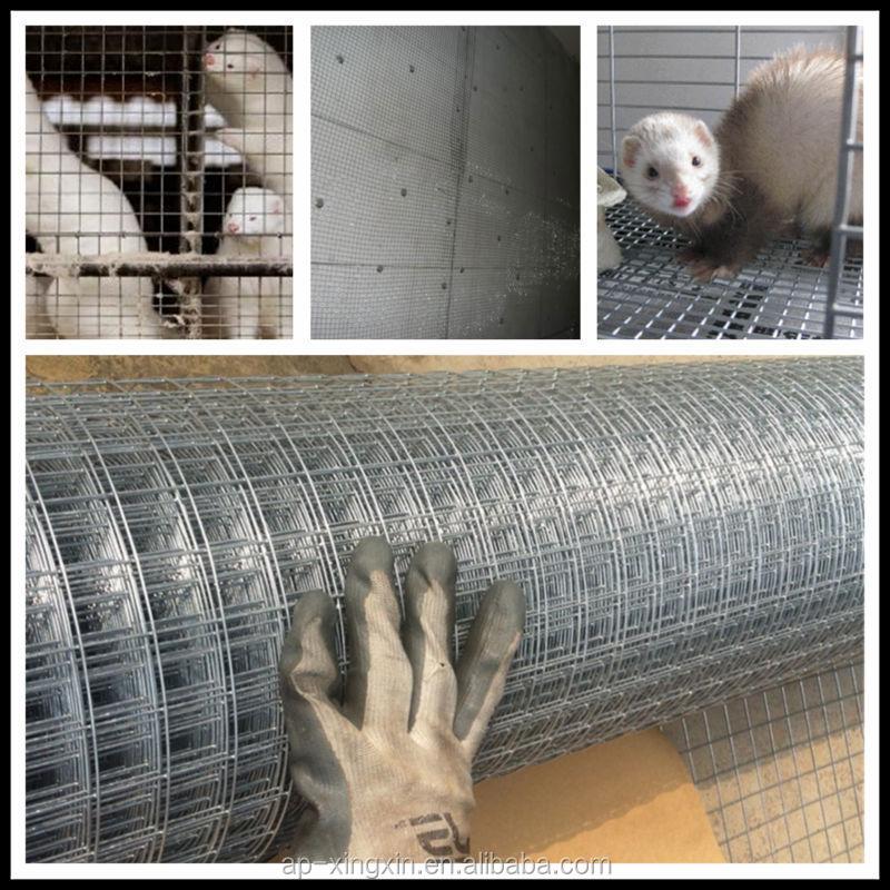 Chers galvanis soud lapin cage oiseaux rouleau de - Treillis soude galvanise ...