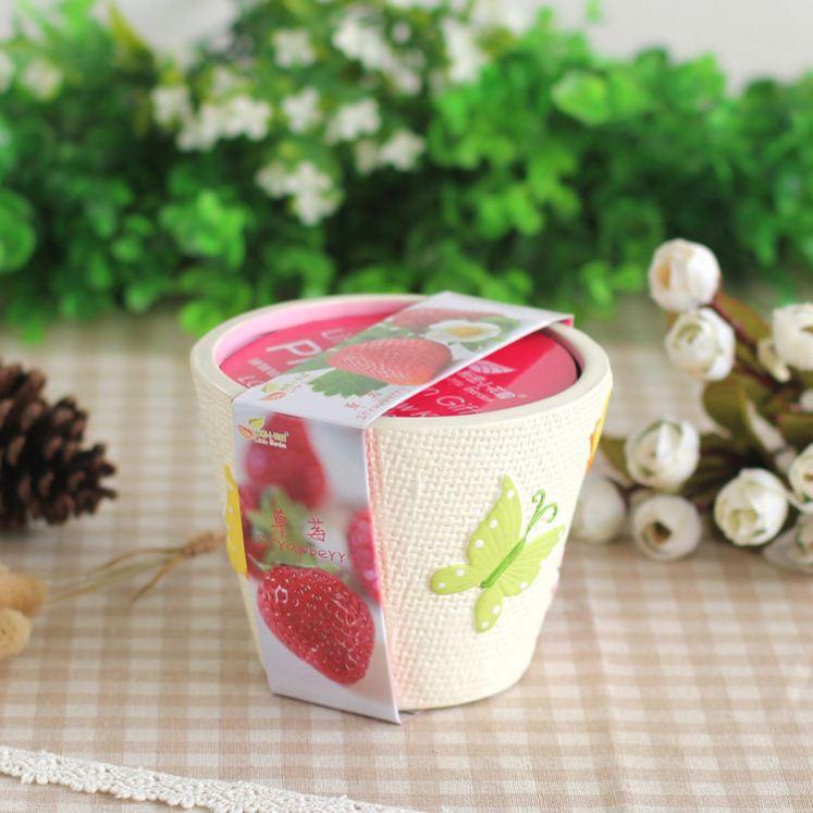 Stylish decorative plastic plant pots valetine`s day gift paper ...