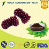 Cosmetic Ingredients Anti-aging Organic Grape Seed Extract / Vitis vinifera L. / Seed Part Used