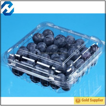 Plastic fruit and vegetable container/packaging box for cherry/blueberry
