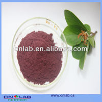Certificated dried bilberry for sale