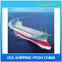 sea cargo freight forwarder shipping service from china to Indonesia --Jacky(Skype: colsales13 )