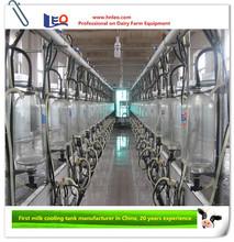 High efficiency Herring bone milking parlour