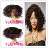 Black Brown Ombre Two Tone Heat Resistant Curly Synthetic Women Wig