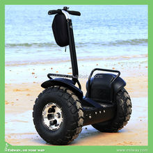CE approval OEM cheap sale 2 wheels balance electric golf scooters, chinese used car