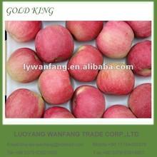 Chinese Apple Fruit Red Fuji Apple Price
