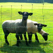 hinge joint field fencing for sheep/cattle/deer/horse