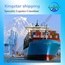 Newest Promotional sea freight shipping from china to Sokhna Egypt---skype:sale6_483