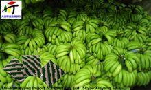 make ethylene glycol/ethylene oxide china/fresh banana providers