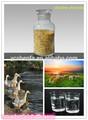 Grado de la alimentación de óxido de zinc 72% en polvo con buen precio para los aditivos de los animales