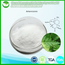 Natural plant Extract artemisinin powder