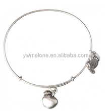 Apple of Abundance Charm Silver Plated Alex And Ani Bangle