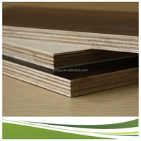 plastic plywood sheet / birch plywood 1.5 mm / low price plywood