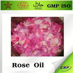 China Rose oil softgel