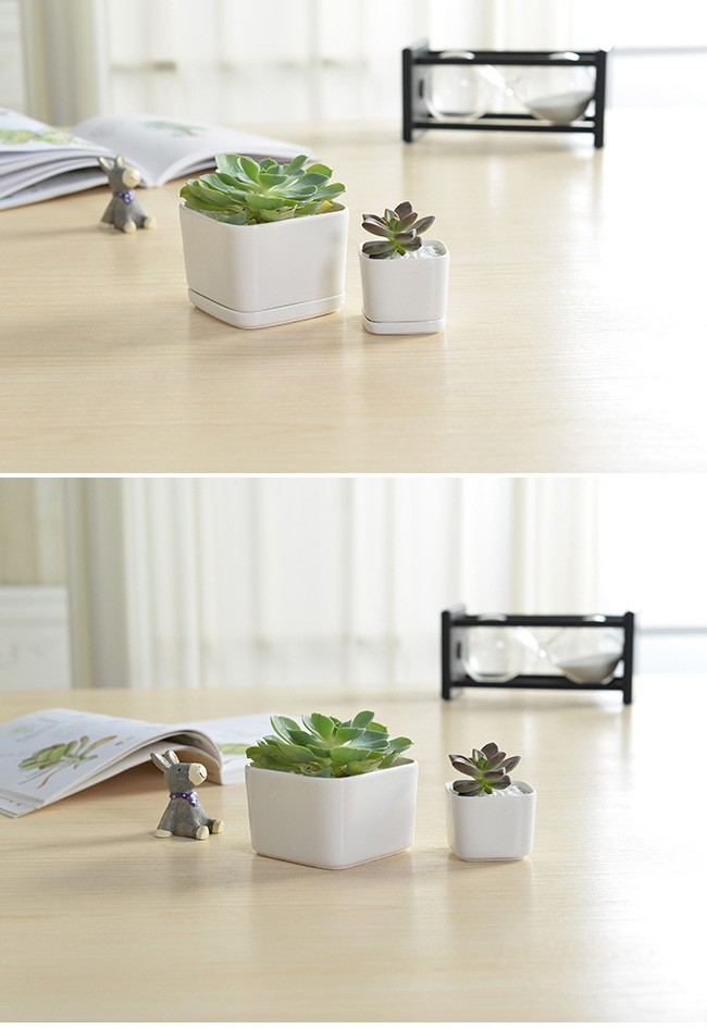 Indoor Rectangular White Mini Ceramic Pots For Succulent