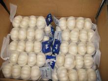 2014 New Chinese Fresh Garlic Normal White Garlic Natural Garlic