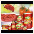 Mais vendidos produtos no alibaba de tomate molho de tomate fábrica