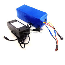 electric vehicles battery 24V 9.6Ah 9.6amps LiFePo4 Lithium iron phosphate battery pack with plastic housing