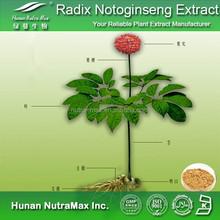 Radix Notoginseng Extract Powder, Notoginseng Powder Extract