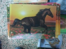 factory direct supplied pp 3d animal wall painting