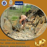 Irregular Rustic Slate Pathway Paving Stone