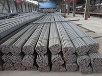 China Wholesale 10mm Sizes of Standard Tmt Steel bar