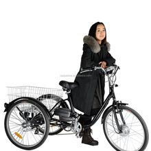 The mini fashion electric bike/bicycle