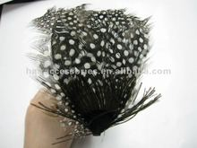 White dotted black Feather headband