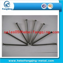 Q195 polished common nail use in wood nail / common wire nail / common nail