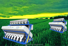 Factory Made Better Quality Barley Color Sorter/Sorting Machine! from Anhui with Nikon Camera!