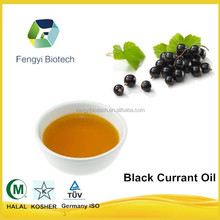 High Quality Cold Pressed Black Currant Seed Oil for Skin Care/Black Currant Extract