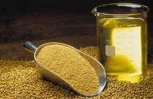 High Qualty Pure Refined soybean Oil... Good Prices