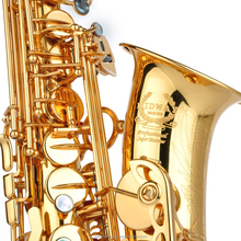 MAS-500 gold lacquer Alto saxophone from China factory