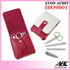 2015 New Arrival Personal Beauty Care Product 4pcs Manicure Set