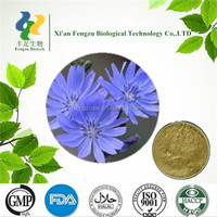 Best quality instant chicory powder & chicory root powder