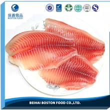 Factory Wholesale Body Part Frozen Tilapia Fish Fillet