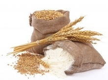 Wheat Flour - High Quantites