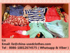 children summer used clothing