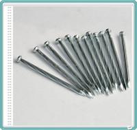 Electro Galvanized Hardened Steel Nails/Steel Concrete Nails China