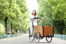 Three wheel cargo bike frame/electric cargo bicycle/cargo trike