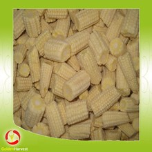 Top quality frozen white baby corn