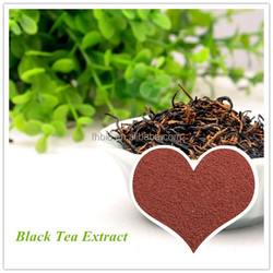 Top Quality Black Tea Extract Powder Supplier