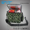 Home use insulated thermoelectric mobile technology beer cooler bag