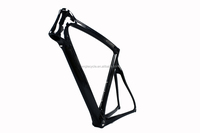 Beautiful carbon TT frame new arriving Time trial,carbon racing bike frame matte size customized