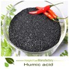 Pingxiang Honganyuan 100% Water Soluble K Fulvic Humic Acid Fertilizer for Rubber Tree