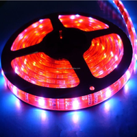 High lumens waterproof flexible LED Strips SMD 5050 30leds red CE&RoHs
