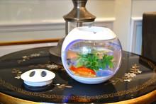 Smart nano glass aquarium fish tank