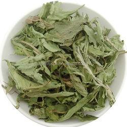 Tian ye ju herb medicine hot sale Natural Organic Green Leaf Stevia