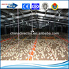 top ranking automatic light steel structure cage feeding chicken house or broiler chicken house with best price