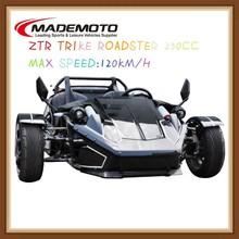 Reverse Trike / ZTR Trike Roadster / 250cc Roadster for Adults